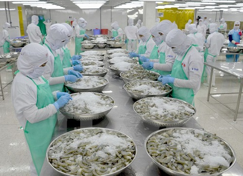 Vietnam shrimp exports up 15% past $1.5bn
